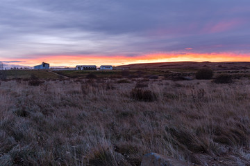 Farmhouse and Barns in the Countryside of Iceland at Sunset © alpegor