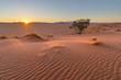 Leinwandbild Motiv Sunset on the dune
