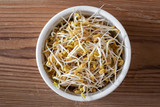 Sprouted fenugreek seeds in a bowl, top view - 248923276