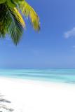 White sandy beach on Maldives island - 248935070