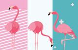 tropical flamingo design