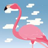 cute flamingo sky