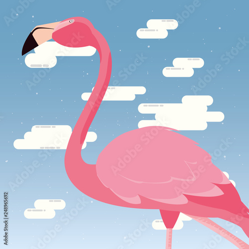 cute flamingo sky