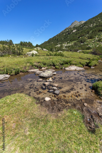 Summer landscape with Valyavitsa river and Valyavishki chukar peak, Pirin Mountain, Bulgaria