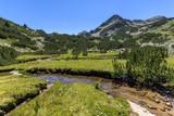 Summer landscape with Valyavitsa river and Valyavishki chukar peak, Pirin Mountain, Bulgaria