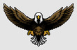 American Bald Eagle with Open Wings and Claws in Cartoon Style