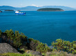 Views of Fidalgo and Padilla bay with Mount Baker at the background from Cap Sante park in Anacortes, WA