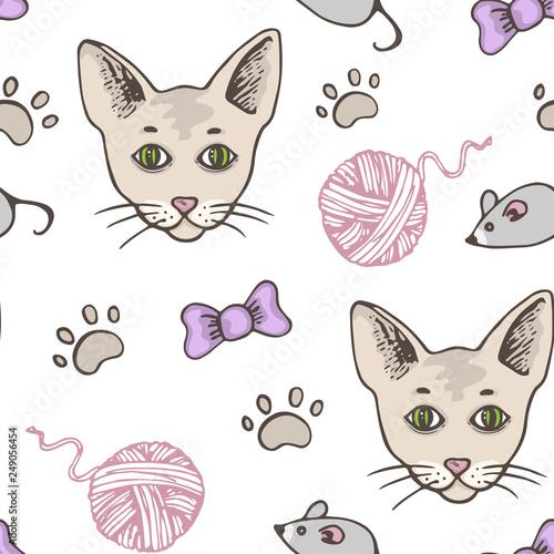 obraz PCV Seamless pattern with cat