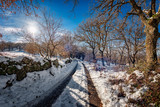Winter country landscape with snow covered country road trails. Clear day on winter. - 249156066