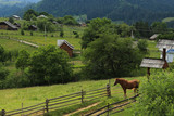 Mountain village and a horse - 249184668