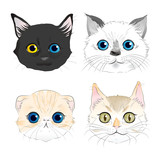 Set of watercolor style illustrations four cat heads portrait