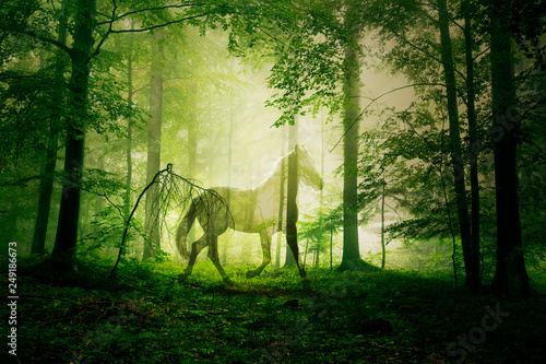 Artistic mystical horse animal in the green colored foggy fairy tale forest landscape.
