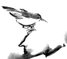 """Постер, картина, фотообои """"Illustration of bird"""""""
