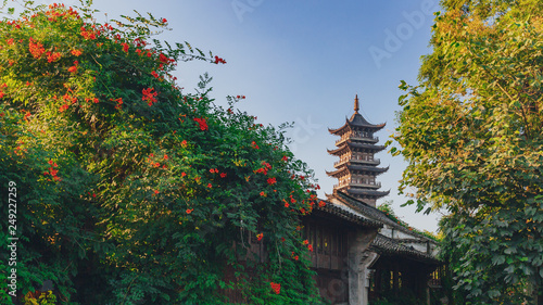 Lotus Tower between trees under blue sky in the old town of Wuzhen, China © Mark Zhu