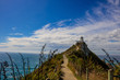 Walking path to Nugget point lighthouse near Kaka point in southern New Zealand - 249240215