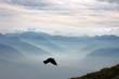 Leinwanddruck Bild - Aussicht vom Niederhorn, Berner Alpen, Schweiz