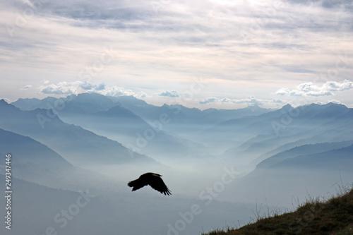 Leinwanddruck Bild Aussicht vom Niederhorn, Berner Alpen, Schweiz
