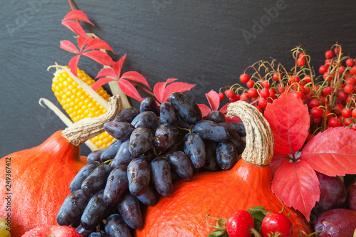 Composition of fresh raw fruits and vegetables - 249367412