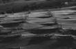 Dunes en noir et blanc - 249375053