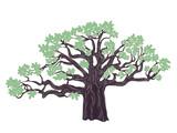 Baobab tree design