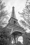 Eiffel Tower in Paris - 249503604