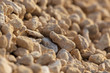 Quadro White gravel on a construction site as an abstract background