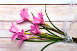 Pink lily flowers on a wooden table
