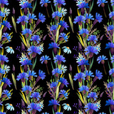 Seamless pattern with blue cornflowers and daisies. Watercolor on black background.