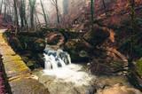 Müllerthall, Schiessentümpel Waterfall, Luxembourg