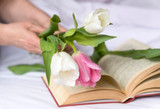white and pink tulips in women's hands, open book