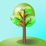 Tree with three leaves color on the green glade. Nature landscape single tree sky background