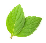 mint leaves isolated - 249666617