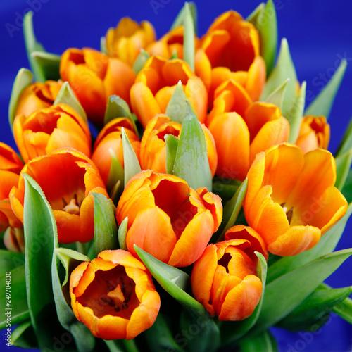 Gelbroter Tulpenstrauß