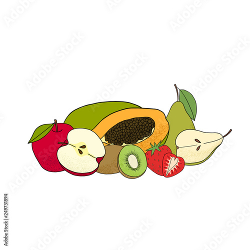 Vector isolated collection fruits. - 249731894