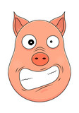 Head of pig in cartoon style. Vector illustration. Woodland animal head icon. Hysterical pig. Pig emotional head.