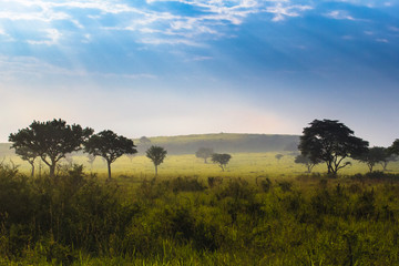 Uganda landscape scenery © HartSmith