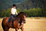 Horse with rider in close-up. Head portraits from the front, foamy, sweaty with front harness.. - 249809665
