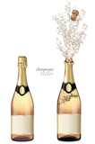 Vector closed and explosion bottles of champagne - 249833482