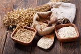 ears of oat, cereals and grains