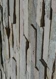 Natur Stein Wand aus Sandsteinen