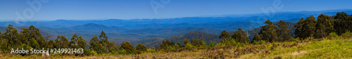 Panoramic view of forests in rural Victoria Australia - 249921463