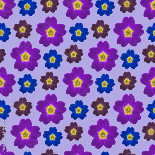 Verbena. Seamless pattern texture of flowers. Floral background, photo collage - 249961040
