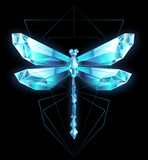 Ice dragonfly - 249961861