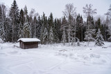 little brown log cabin in snow in sweden - 249985697