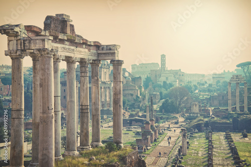 mata magnetyczna View of the ruins of the Roman Forum in Rome, Italy