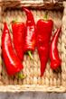Fresh red paprika harvest