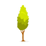 Green tree. Floral park element for design