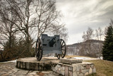 Old rustic cannon from world war two. Region of Tara mountain in Serbia.