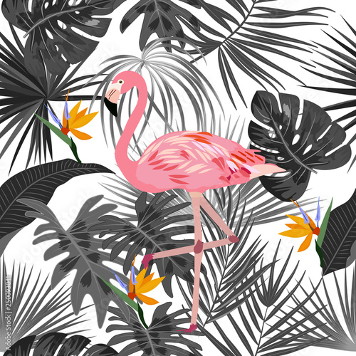 Tropical vector seamless pattern with flamingo. © Artlu
