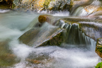 Water over rocks creek in forest